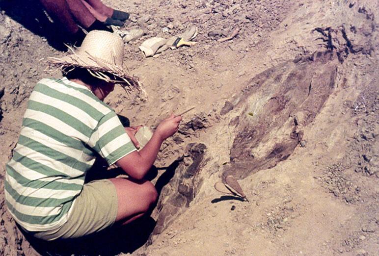 Excavación Mazaterón 1990 - 02