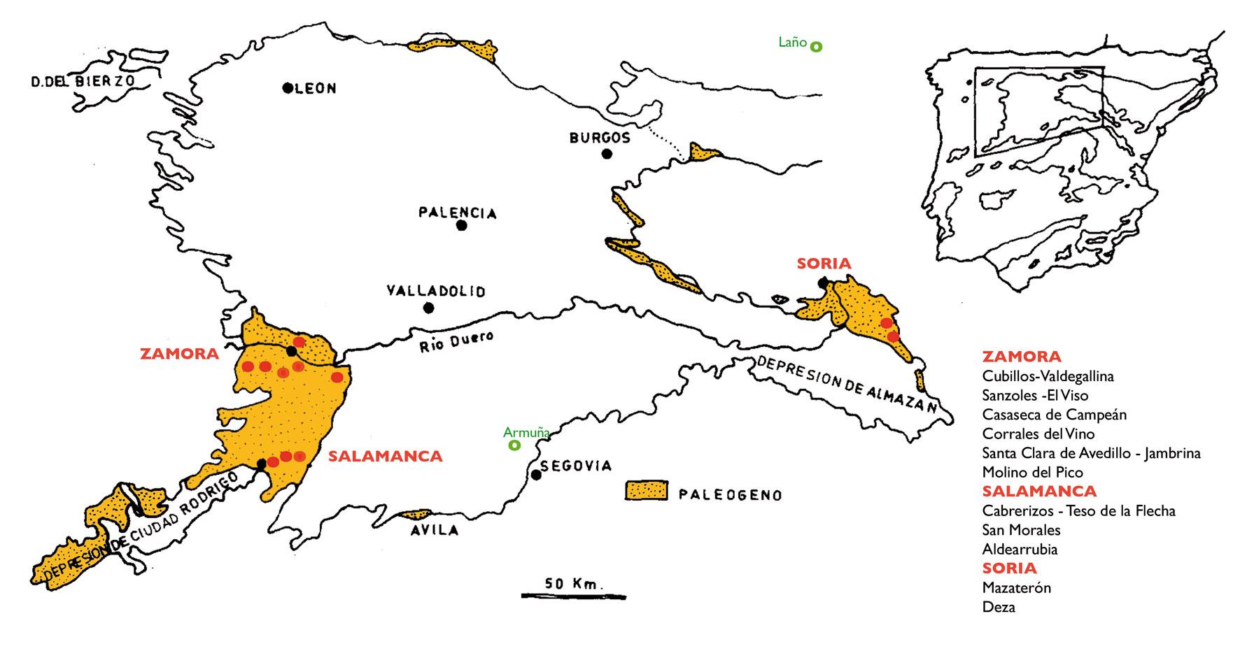 Yacimientos de vertebrados del Eoceno de la Cuenca del Duero